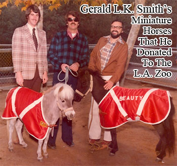 Gerald L. K. Smith's miniature horses that he donated to the Los Angeles Zoo